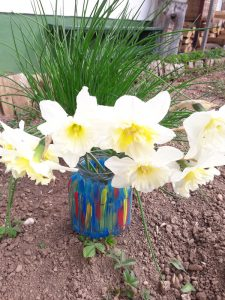 Pisana vaza z rumenimi narcisami